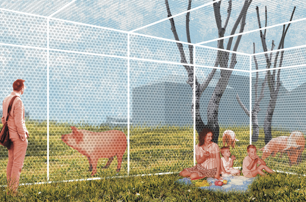 """Fall 2016, final reviews. """"Animal Neighborhood"""": project by student Alex Petruso."""